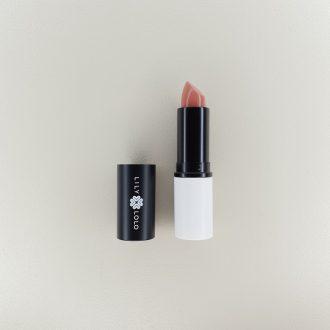 Rouge à lèvres (différentes couleurs)