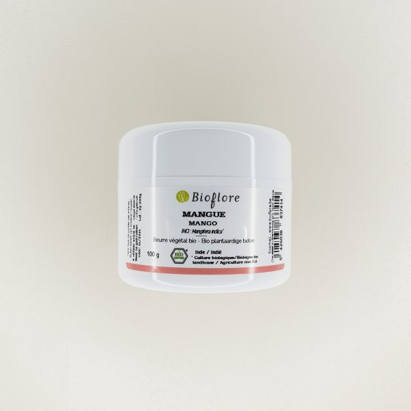 Beurre de mangue bio 100 grammes Bioflore